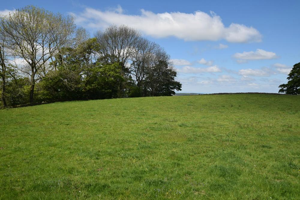 LOT 1: Land at Scalehouses property image