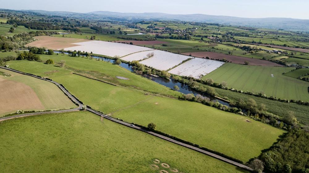 LOT 4: Luham Farm - CLOSING DATE FOR OFFERS SET property image