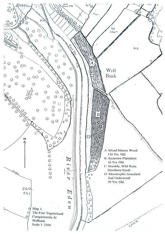 Well Bank Wood property image