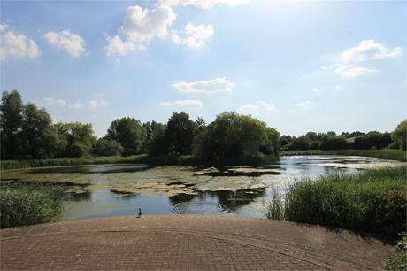 Walton Park, MILTON KEYNES Image