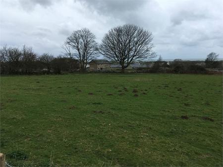 Pentre Uchaf Estate Grazing Land, Dyffryn Ardudwy, Gwynedd