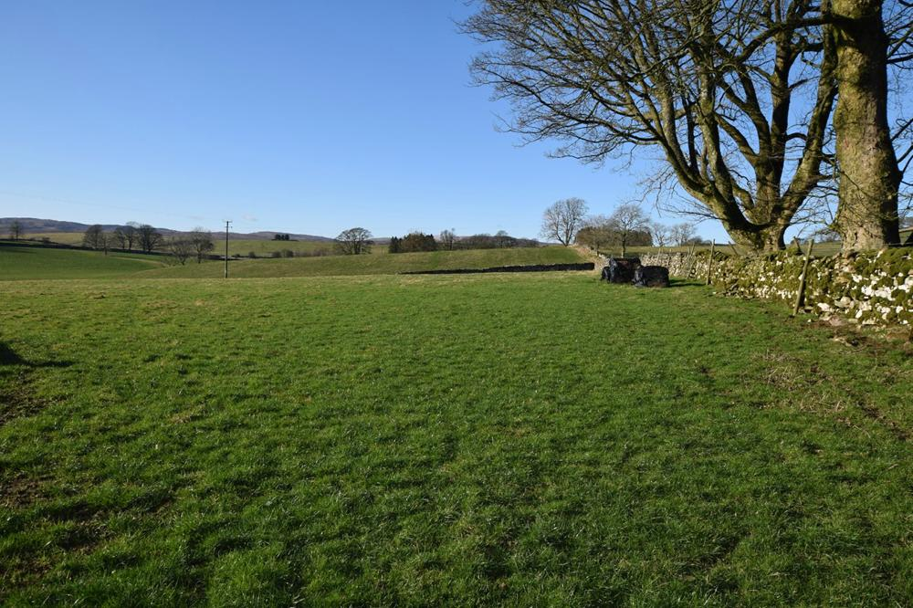 Land at The Park property image