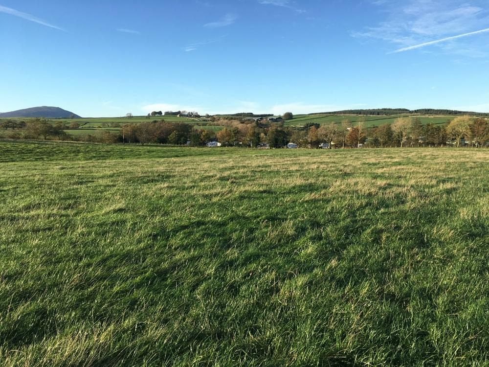 Land at Whitbarrow SOLD SSTC property image